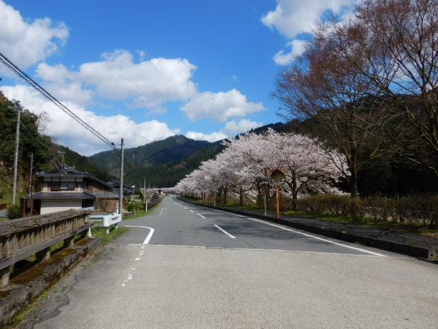 美山にて201904-14