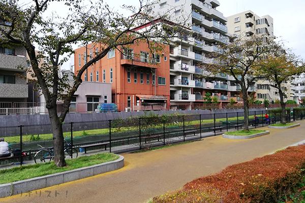 大横川親水公園029