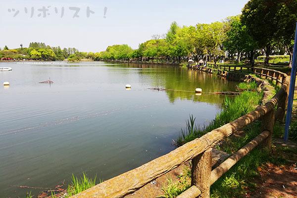 浮間公園028