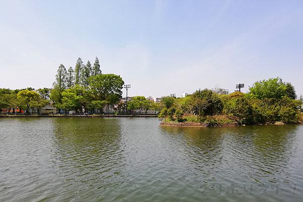 浮間公園030