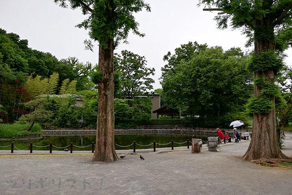 赤塚溜池公園009