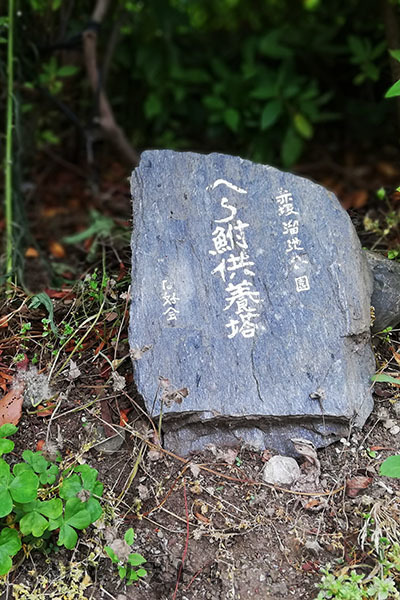 赤塚溜池公園016