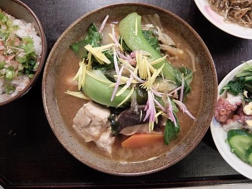 20181206_食用菊4
