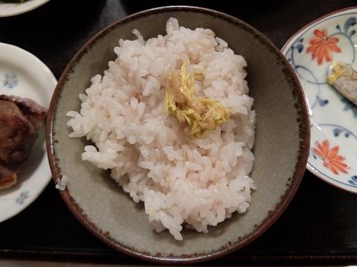 20181206_食用菊5