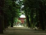 1.鹿島神宮-11D 0805q