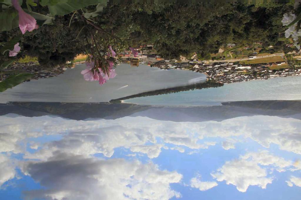 201009254106.jpg