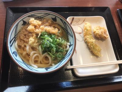 Japan 2018 Marugame