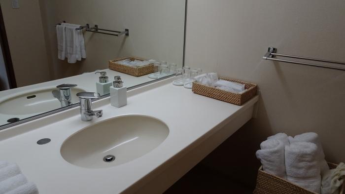 部屋と風呂 (5)