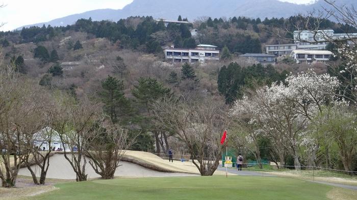 ゴルフ観戦 (3)