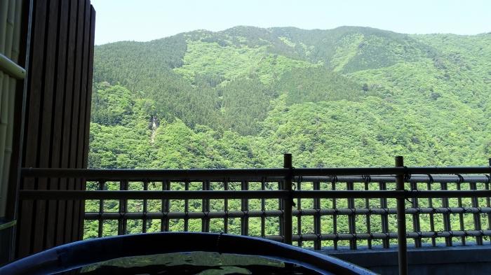 祖谷温泉部屋 (10)