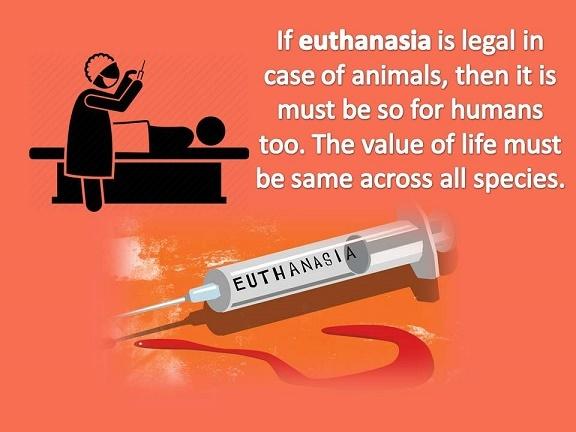 Euthanasia-Introduction.jpg