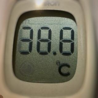今日の体温は38.8℃