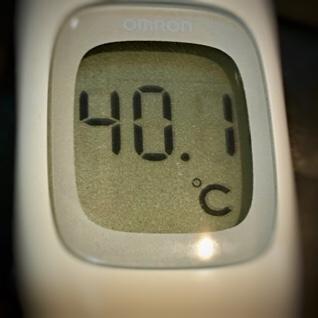 今日の体温は40.1℃の高熱!