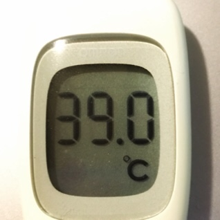 今日の体温は39℃