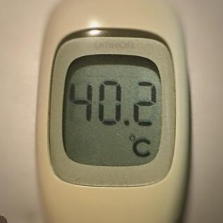 今朝の高熱は40.2℃