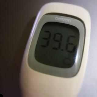 今日も高熱の39.6℃