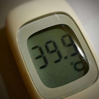 今日の体温は39.9℃