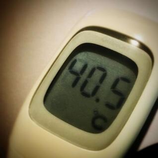 今日の高熱は40.5℃、肝臓に発覚した転移再発胃ガンの進行によるものなのでしょうか?