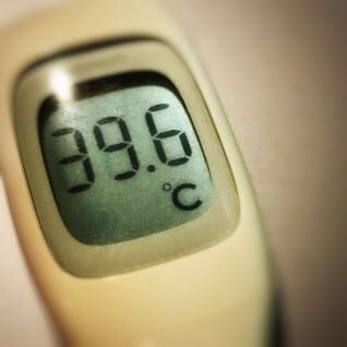 今日の体温は39.6℃