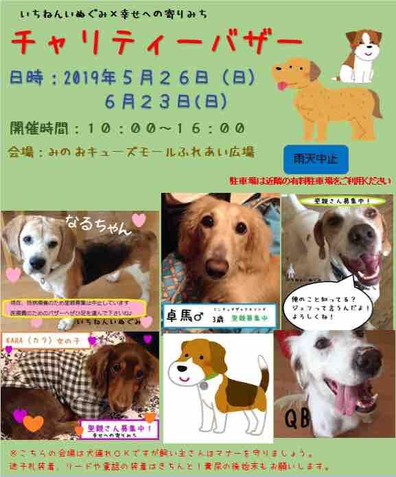 fc2blog_201903151719140fd.jpg