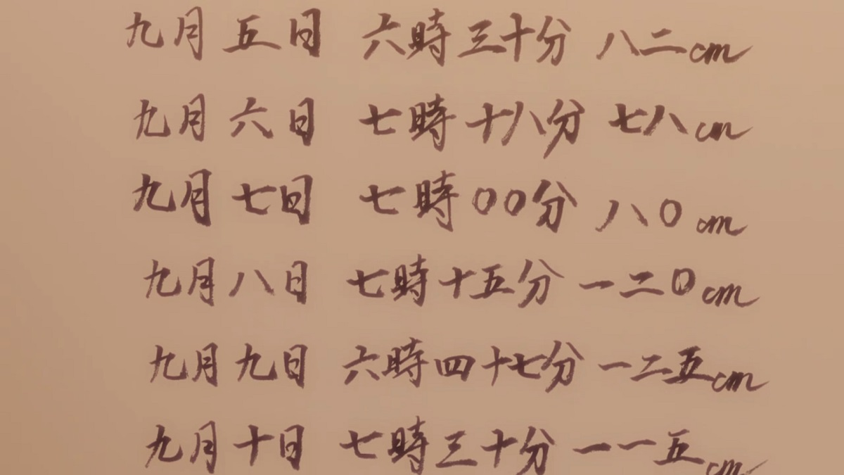 うざメイド03-11