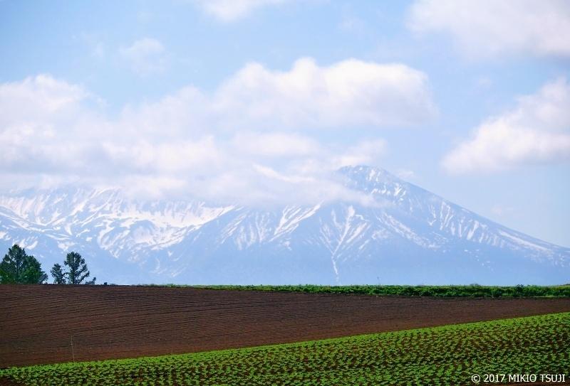 0285 富良野岳の見える丘 (北海道 美瑛町)