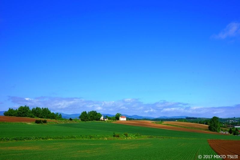 0287 白い家のある風景 (北海道 美瑛町)